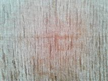 Wood grain surface after cutting, background. nature royalty free stock image