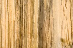 Wood Grain Texture 2. A close up of a wood grain texture pattern on split pine timber Stock Image