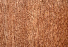 Wood grain texture. Stock Images