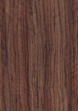 Wood grain texture background. High resolution natural wood grain texture Stock Photography