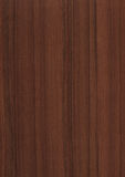 Wood grain texture background. High resolution natural wood grain texture Stock Photos