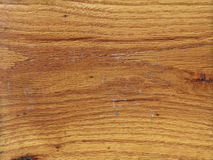 Wood Grain Texture Detailed View. Extreme close up of oak wood textured. Focus across entire surface Royalty Free Stock Photos