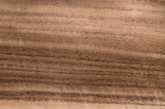 Wood grain texture, exotic veneer background Stock Image