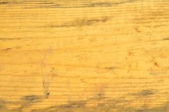 Wood pine texture. Grain, cover. Wood grain texture. Pine wood, can be used as background stock image