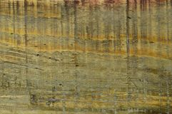 Wood pine texture. Grain, cover. Wood grain texture. Pine wood, can be used as background royalty free stock photo