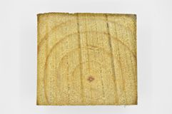 Wood pine texture. Grain, cover. Wood grain texture. Pine wood, can be used as background royalty free stock images