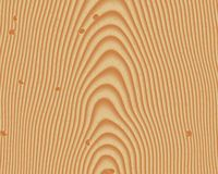 Wood grain textured background. Southern yellow pine vector illustration