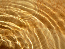 Wood grain under water Stock Photography