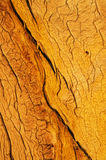 Wood Grain Royalty Free Stock Photos