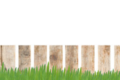 Wood and Grass for background Royalty Free Stock Photo