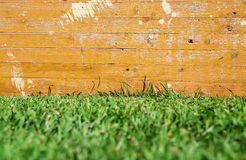 Wood and grass background. Photo of Wood and grass background Royalty Free Stock Photography