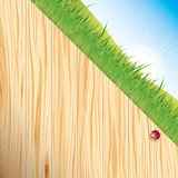 Wood and grass background Royalty Free Stock Image