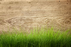 Wood and grass Stock Photography