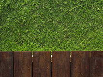 Wood and grass Stock Image