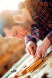 Wood gravyr, slut upp royaltyfri fotografi