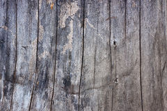 Wood gray texture Stock Photography