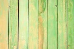 wood green som målas Fotografering för Bildbyråer
