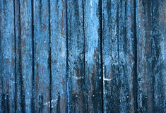 Wood Grunge Surface Texture Background Stock Photography
