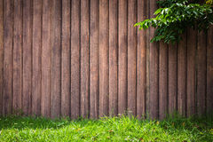 Wood grunge vertical with tree grass on frame background. Stock Photography