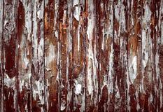 Wood grunge vintage background. Wood grunge vintage texture background royalty free stock photo
