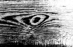 Wood grungetextur Naturlig träisolerad bakgrund också vektor för coreldrawillustration Arkivbild