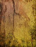 Wood grungy background Royalty Free Stock Image