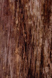 Wood grungy background Royalty Free Stock Photos