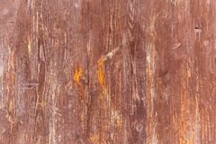 Wood grungy background Royalty Free Stock Images