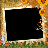 Wood Grungy Background With Frame And Flowers Royalty Free Stock Photos