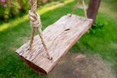 Wood gunga Royaltyfri Fotografi