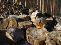 Wood hög Royaltyfria Foton