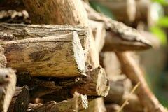 Wood hög Royaltyfri Fotografi