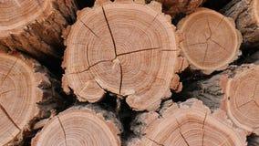 Wood hög för journal lager videofilmer