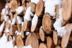 Wood hög utanför Arkivbild