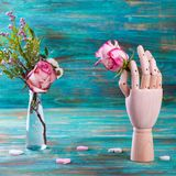 Rose in wooden hand on turquoise background Stock Photo