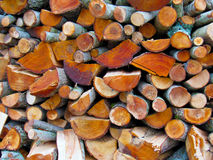 Wood. Harvested for the winter Royalty Free Stock Photography