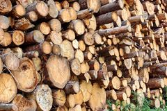 Wood Harvesting Background Stock Image
