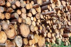 Wood Harvesting Background Stock Image