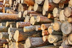 Wood Harvesting Background Royalty Free Stock Photos