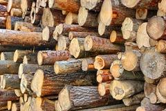 Wood Harvesting Background Royalty Free Stock Photos