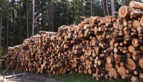 Wood harvesting Royalty Free Stock Photo