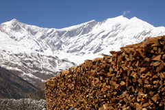 Wood in the himalayas mountains Stock Photo