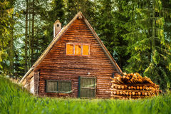 Wood house in the forest. With green pines Royalty Free Stock Photo