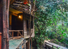 Wood house in the forest and rivulet 2. Wood house in thailand forest and rivulet Royalty Free Stock Photo