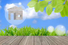 Wood house on green grass field in morning  sky,environm. Wood house on green grass field in morning sunlight sky,environment concept Royalty Free Stock Images