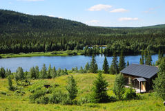 Wood house near blue lake in the middle of taiga forest. Royalty Free Stock Photo