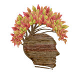 wood human head and leaves Stock Photos
