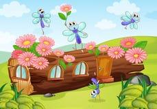 Wood hus och flugor Arkivbild