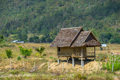 Wood hut in rice field countryside Stock Photos