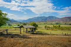 Wood hut in rice field countryside Stock Image